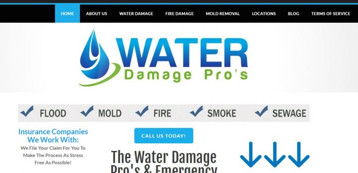 water damage pros
